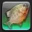 【FF14で釣りをする】 ブラッディブルワー