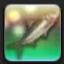 【FF14で釣りをする】 ダーティヘリング