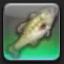 【FF14で釣りをする】 フェアリークィーン
