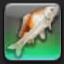 【FF14で釣りをする】 人面魚