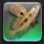 【FF14で釣りをする】 マッドピルグリム