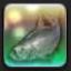 【FF14で釣りをする】 シルバーソブリン