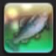 【FF14で釣りをする】 招嵐王